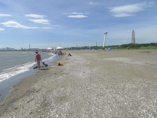 20120716・葛西海浜公園4-11