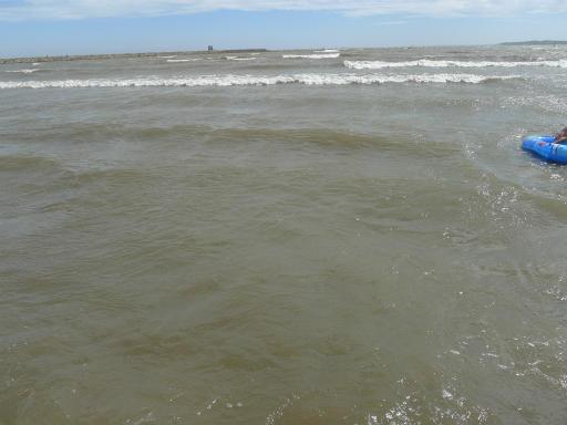20120716・葛西海浜公園4-14