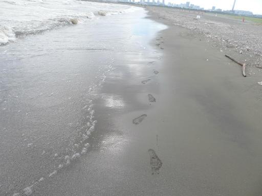 20120716・葛西海浜公園5-04