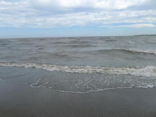 20120716・葛西海浜公園5-01