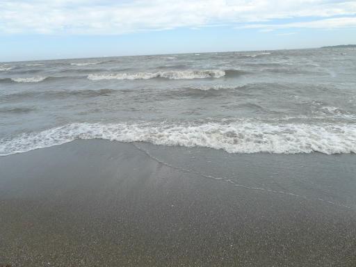 20120716・葛西海浜公園5-02