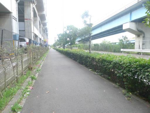 20120716・葛西海浜公園5-17