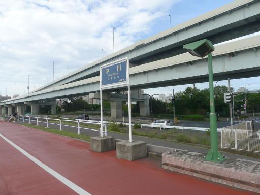 20120716・葛西海浜公園5-21