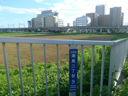 20120716・葛西海浜公園6-06