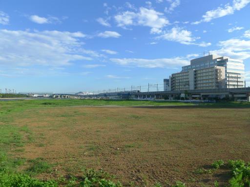 20120716・葛西海浜公園6-09