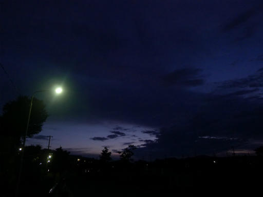 20120818・晩夏06