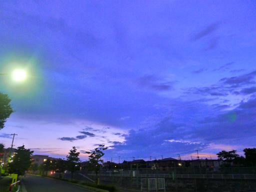 20120818・晩夏05