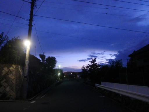 20120818・晩夏03