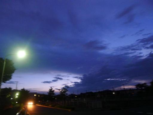 20120818・晩夏04