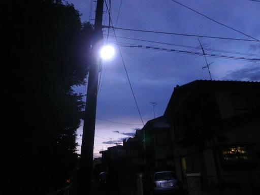 20120818・晩夏02