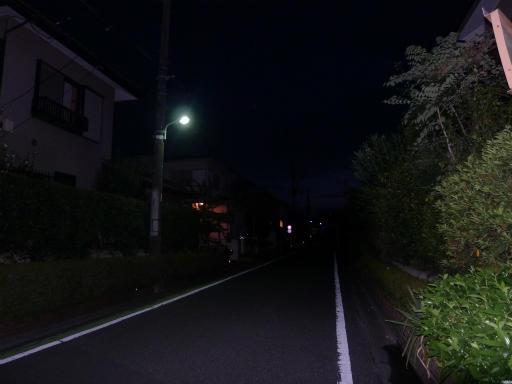 20120818・晩夏08
