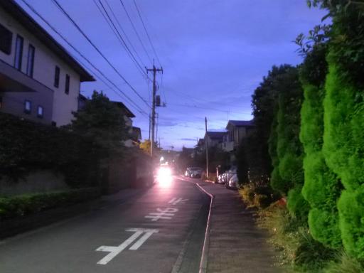 20120818・晩夏07