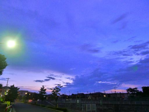 20120818・晩夏大2