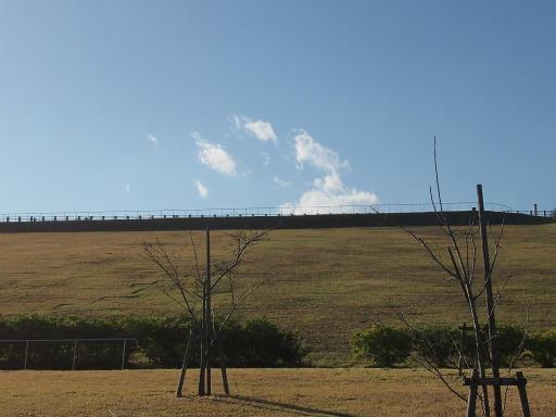 20141115・狭山湖の空04