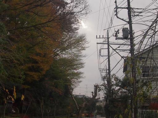 20141130・荒幡富士散歩1-08