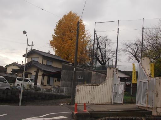 20141130・荒幡富士散歩1-15