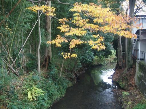 20141130・荒幡富士散歩1-23