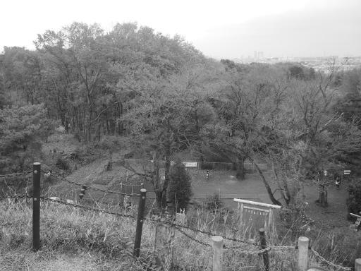 20141130・荒幡富士散歩2-09