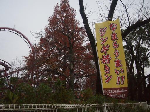 20141130・荒幡富士散歩空22