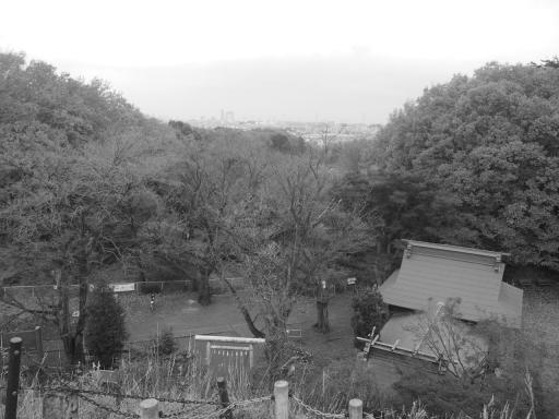 20141130・荒幡富士の紅葉8・モノクロ・大