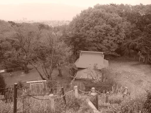 20141130・荒幡富士の紅葉8・セピア・大