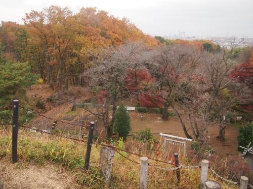 20141130・荒幡富士の紅葉8・カラー・大