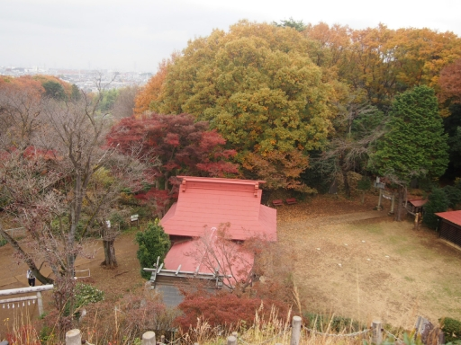 20141130・荒幡富士の紅葉7・大
