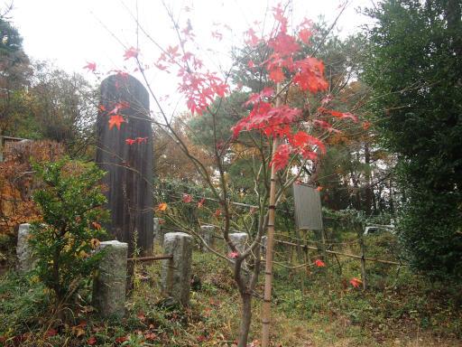 20141130・荒幡富士の紅葉6