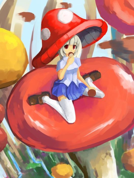 mushroom02.jpg