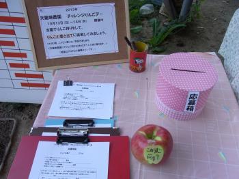 2013.チャレンジりんごデー