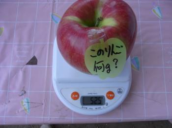 スイートの重さ 結果