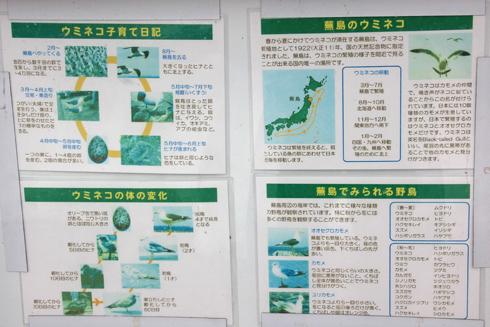 蕪島-12