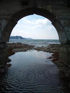 夏泊半島の大島-66