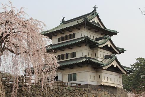 弘前桜2012-7