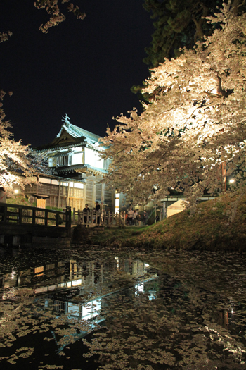 弘前城公園夜景(1)-6