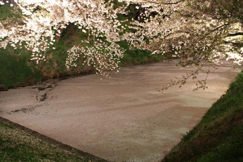 弘前城公園夜景(1)-2