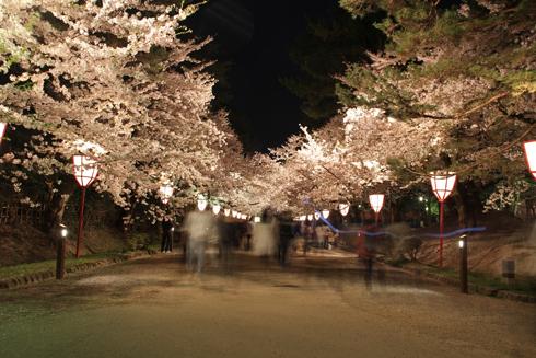 弘前城公園夜景(1)-3