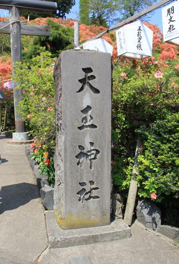 天王神社つつじ祭り-2