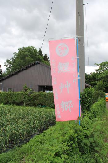 鯉艸郷-1