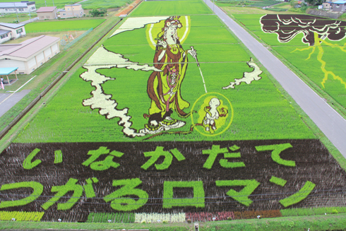 田んぼアート2012-5