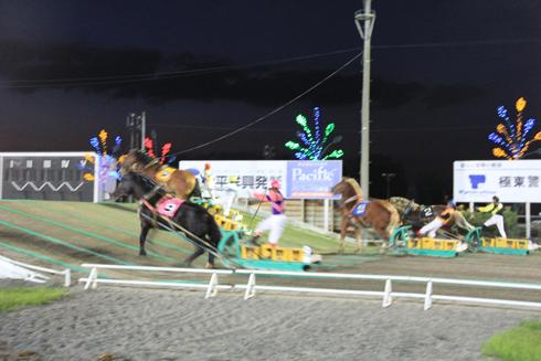 ばんえい競馬-14
