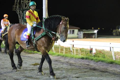 ばんえい競馬-9