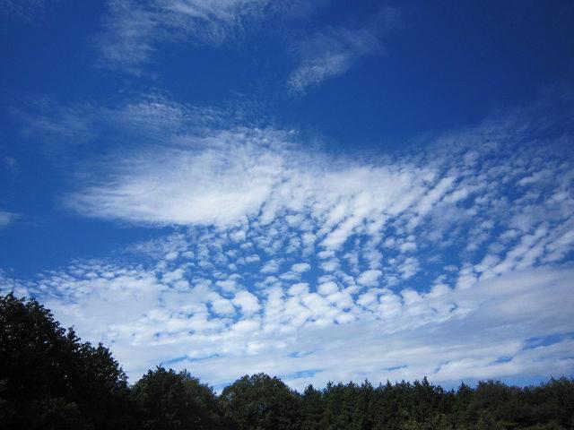 131001-10月1日秋の空