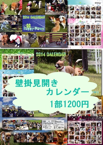 20131010-2.jpg
