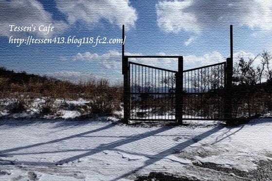 IMG_3626 - コピー
