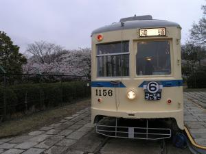 s-P3305529.jpg