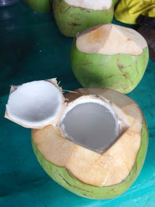 coconut juice