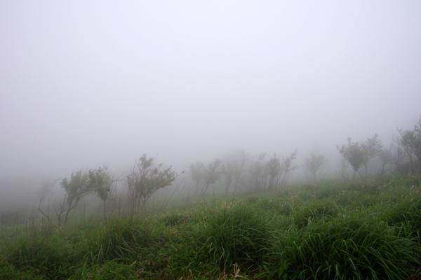 鍋割山06