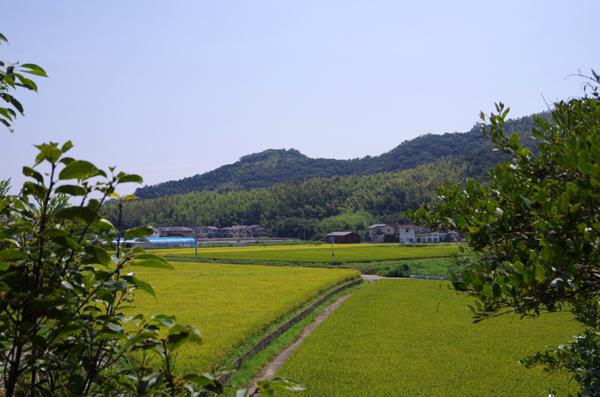 弁天山05