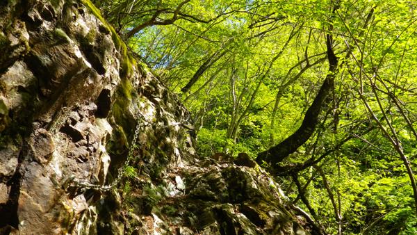 体験の森3
